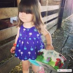 Fun Family Activity: Blueberry Picking At Quinn Farm with a Toddler