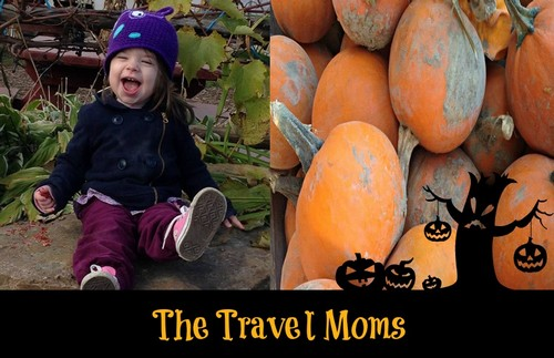 Halloween Family Fun: Pumpkin Picking On a Farm with Our Toddler