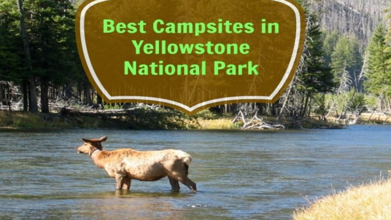 Yellowstone National Park Rv Parks >> Best Campsites In Yellowstone National Park