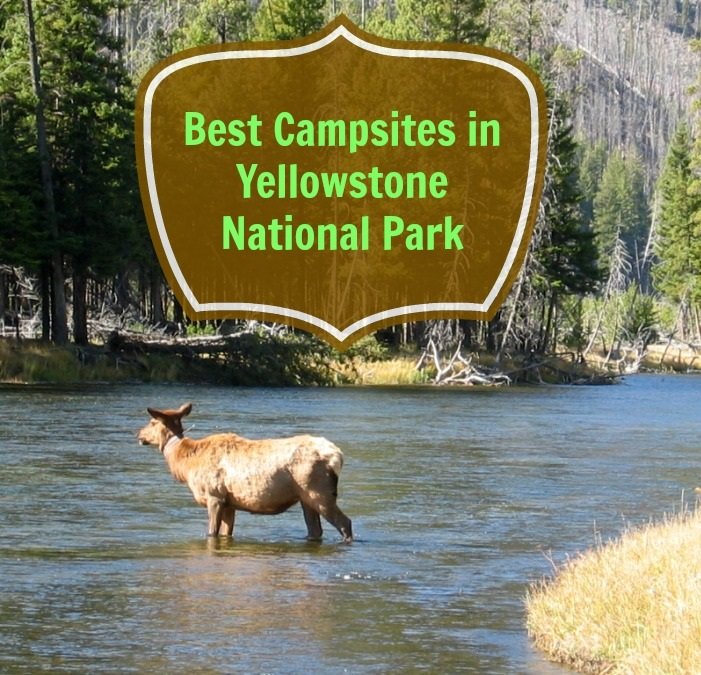 Best-Campsite-Yellowstone-park
