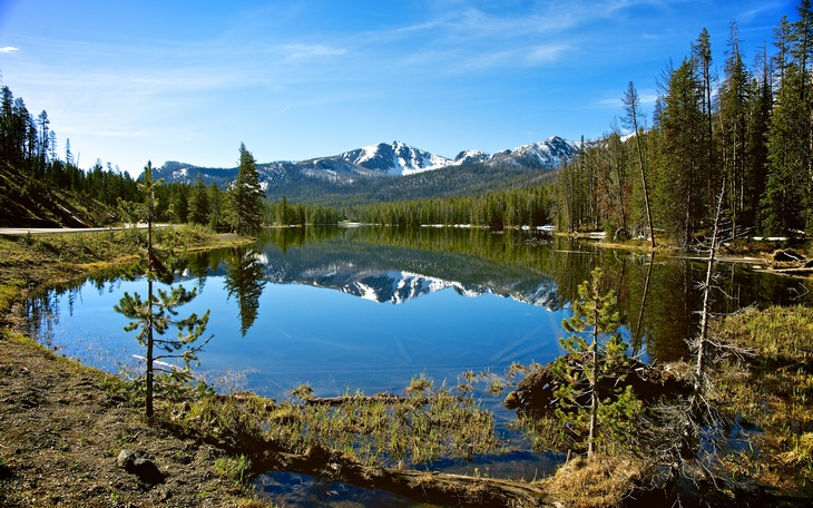 Best Family Friendly National Parks And Tips For An