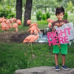 Visiting The Calgary Zoo – Experience a Walk Around the World In One Day #VisitCalgary