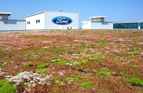 Ford Green Initiative – Sustainability and Innovation for the Future @Ford #FordNAIAS