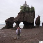 """Vacation At Bay Of Fundy, New Brunswick & View The Hopewell Rocks """"Awesome"""""""