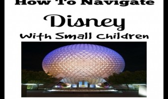 How To Navigate Disney With Small Children