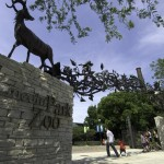 Chicago Family Freebies: Lincoln Park Zoo