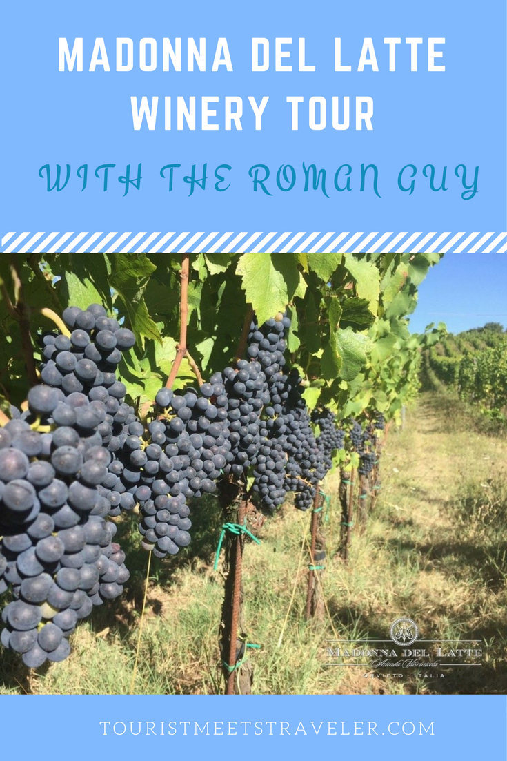 Tour Madonna del Latte Winery On The Roman Guy's Private Day Trip From Rome