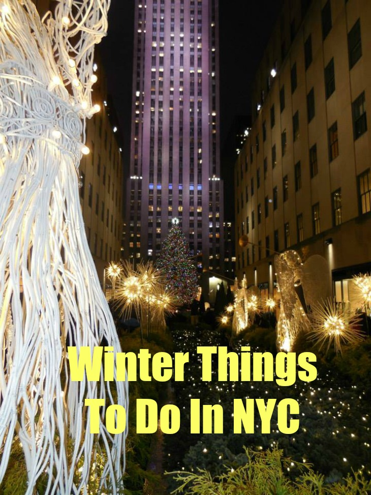 Things to do in new york city in the winter tourist for Things to do in new york in winter