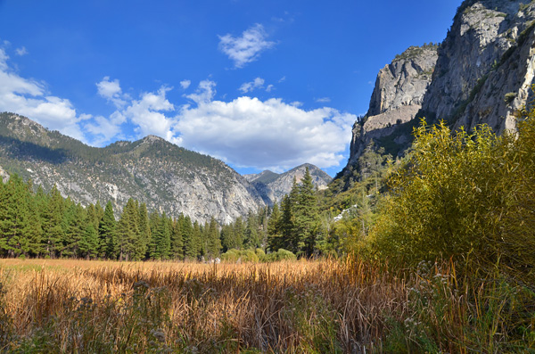 Nature Vacation Destinations: California's Sequoia and Kings Canyon National Parks