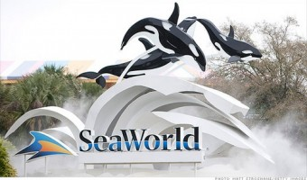 SeaWorld Orlando Is Florida's Premier Marine Adventure Park
