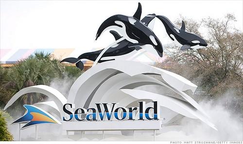 SeaWord-Orlando