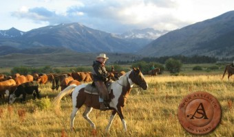 Summer Vacation Planning Tool – The Spur Alliance Will You Find the Perfect Dude Ranch