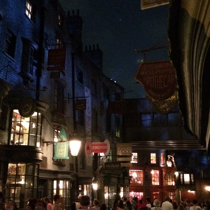 Tourist Meets Traveler - A Terminal Journey - Diagon Alley