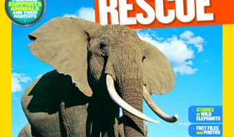 World Elephant Day – Help Save Animals with National Geographic Mission: Animal Rescue