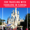 Tips For Traveling With Toddlers In Florida